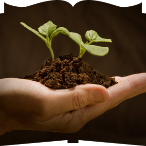 seed-sowing-hand1